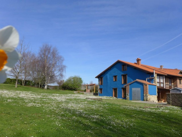 Ref.MNGO001R - Miengo (Cantabria)