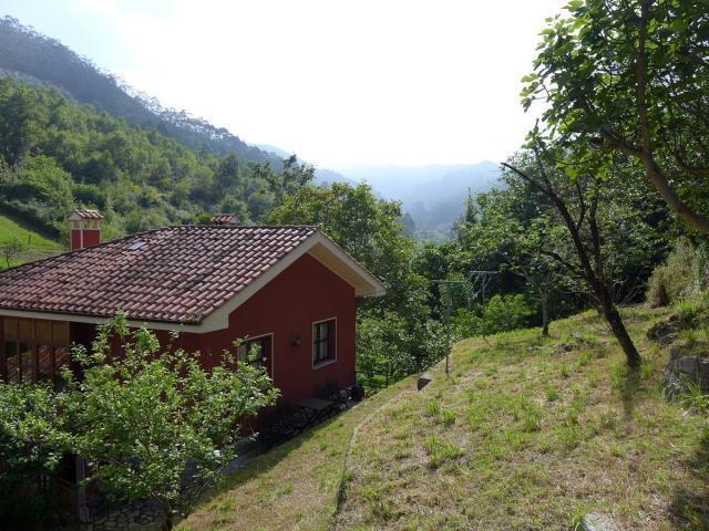 Ref.15271N - TORRE (Asturias)