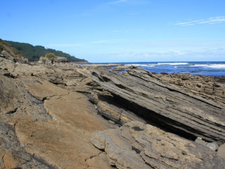 Acantilados de Tereñes: Uno de los yacimientos de huellas de dinosaurios que no te puedes perder