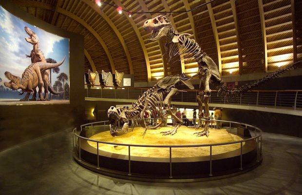 Visita el Museo del Jurásico de Asturias (MUJA) y vive una experiencia inolvidable